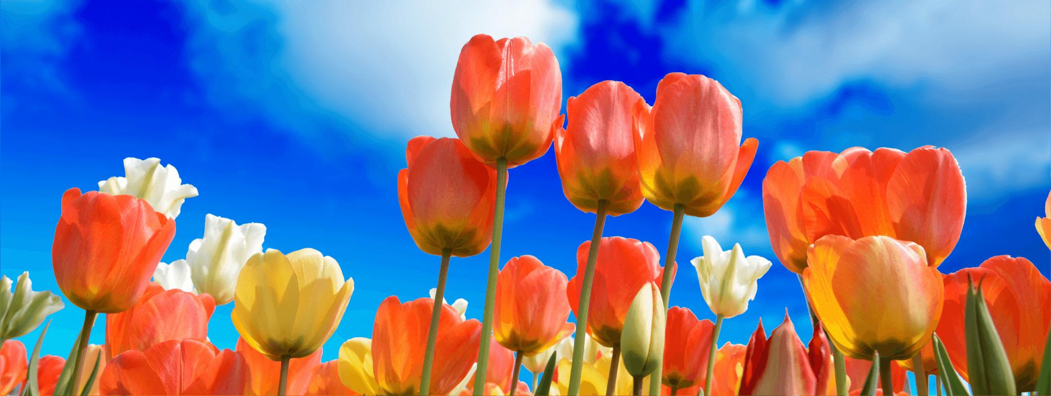 關係花園-關於花園img-學員怎麼說-banner
